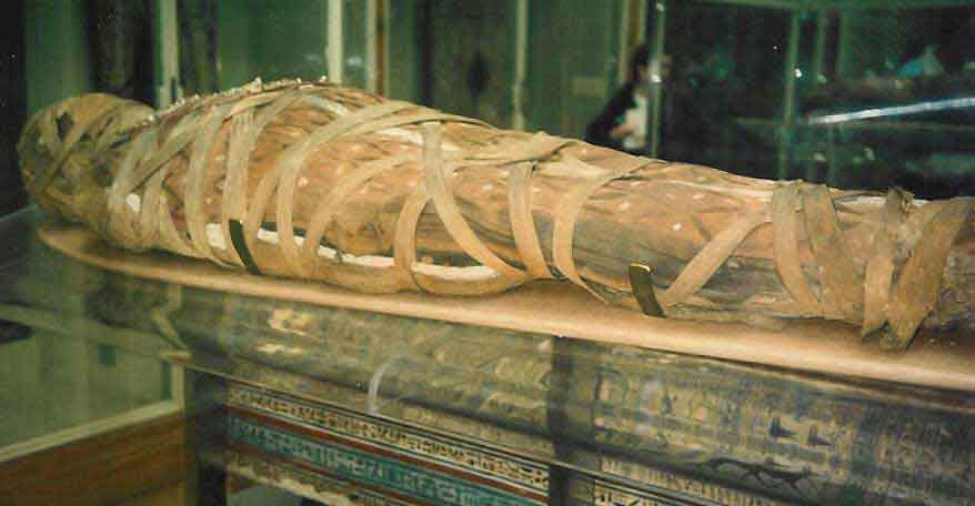 mummification essays Mummies and the wonders of ancient egypt essay writing service, custom mummies and the wonders of ancient egypt papers, term papers, free mummies and the wonders of ancient egypt samples, research papers, help.